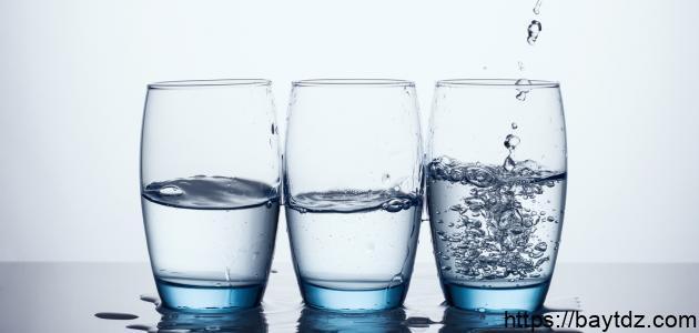 الماء عصب الحياة