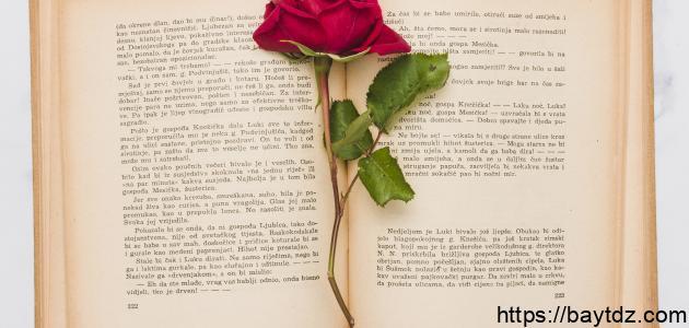 قصة الحب الاعمى