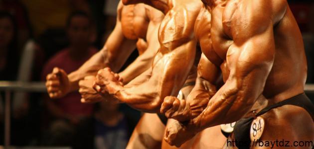 كيفية تضخيم العضلات
