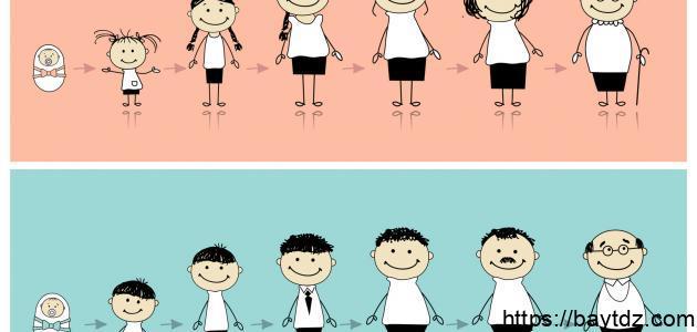 مراحل النمو عند بياجيه