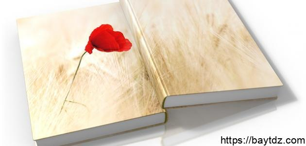 أبيات شعر عن الحب قصيرة