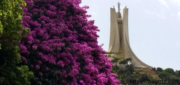 أجمل الأماكن السياحية في الجزائر