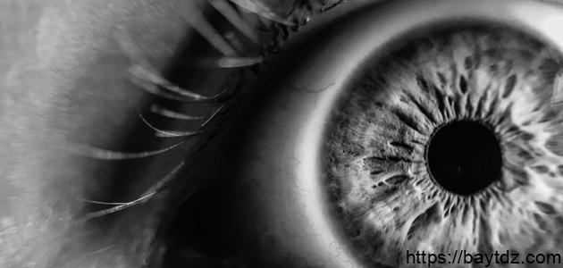 أدعية لفك السحر والعين والحسد