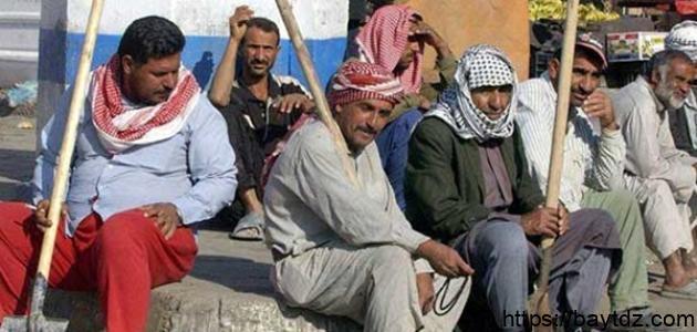 أسباب البطالة في مصر