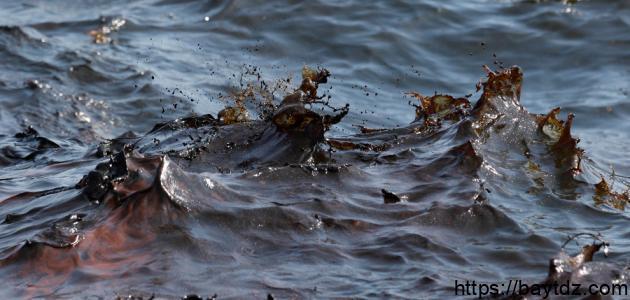 أسباب تلوث مياه البحر