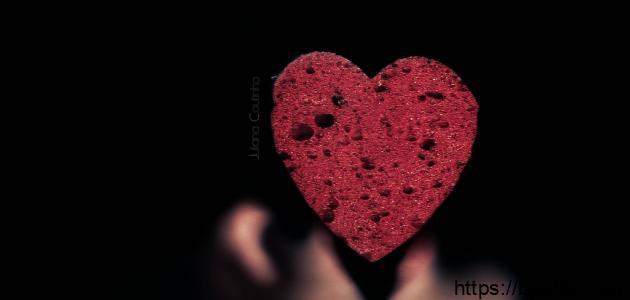 أشعار المتنبي عن الحب
