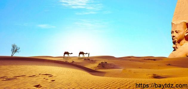 أشعار عن مصر لأحمد شوقي