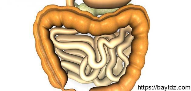 أعراض مرض القولون