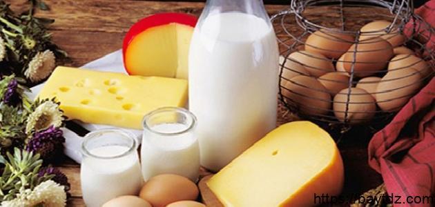 أغذية تحتوي على الكالسيوم