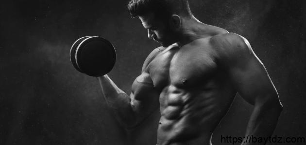أفضل الطرق للحصول على عضلات البطن