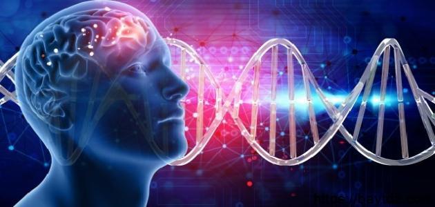 أنواع أورام الدماغ