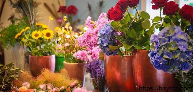 أنواع الأزهار وأسماؤها