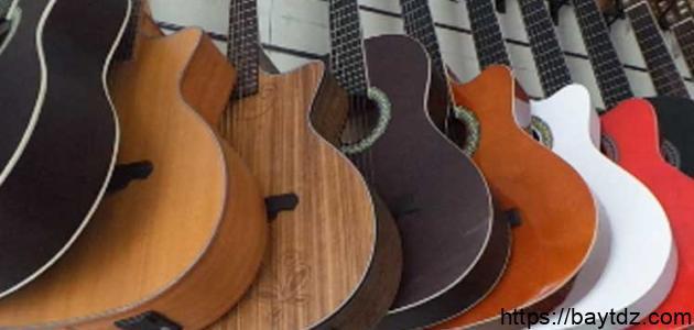 أنواع الجيتارات