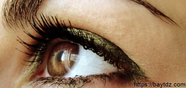 أنواع العيون