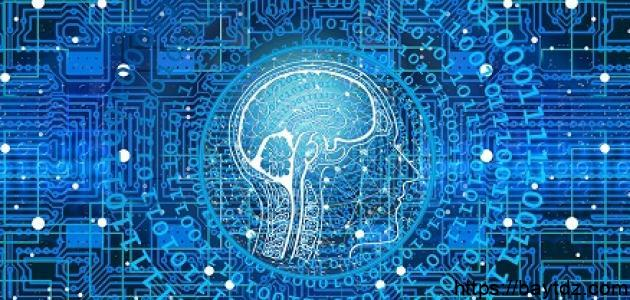 أنواع شبكات الحاسب