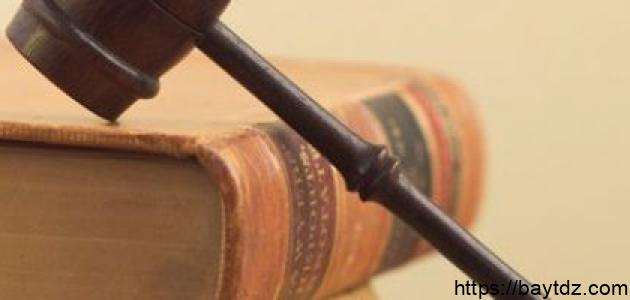 أهمية الدستور