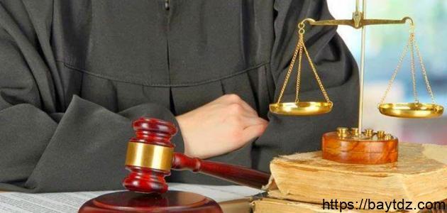 أهمية القانون الإداري