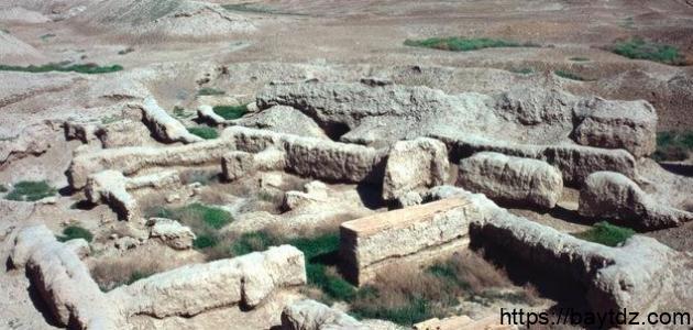 أين تقع آثار مدينة ماري
