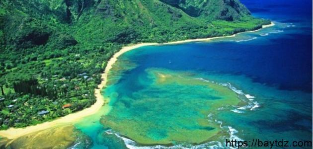 أين توجد هاواي