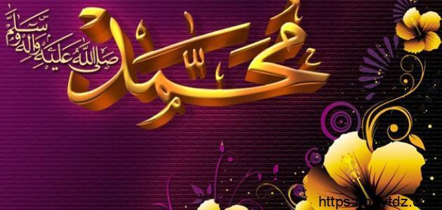 أين ولد سيدنا محمد صلى الله عليه وسلم