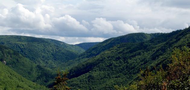أين يوجد الجبل الأخضر