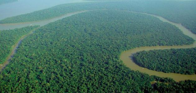أين يوجد نهر الأمازون