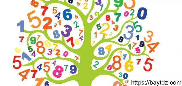 بحث عن الرياضيات