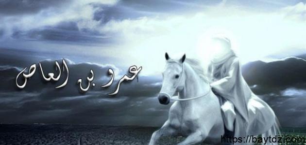 بحث عن عمرو بن العاص
