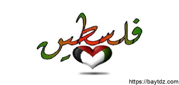 بحث عن فلسطين