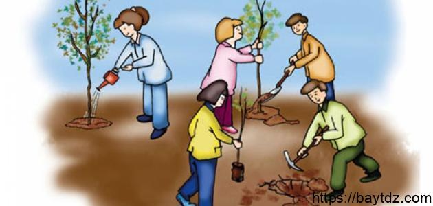 بحث عن نظافة البيئة