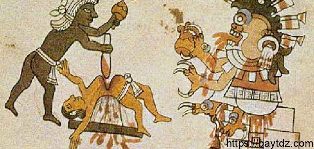 تاريخ البشرية