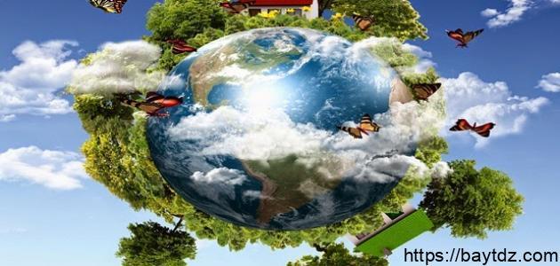 تعريف علم البيئة