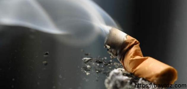 تقرير صحفي عن التدخين