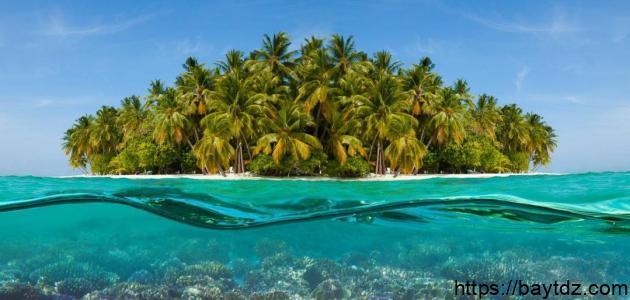 تقرير عن جزر عربية