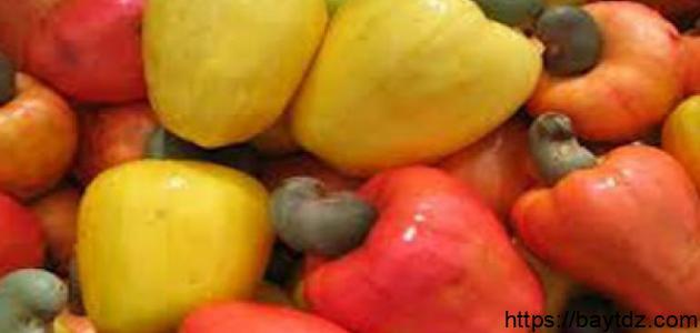 ثمرة الكاجو