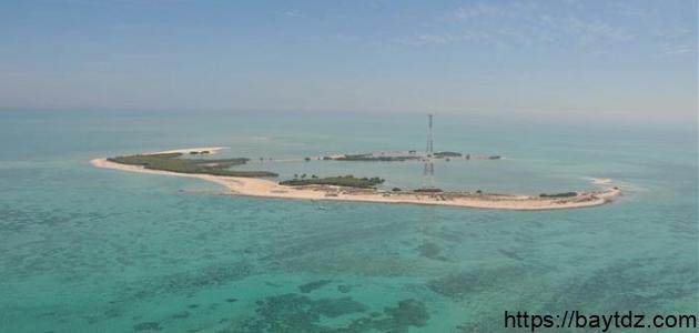 جزيرة بوطينة