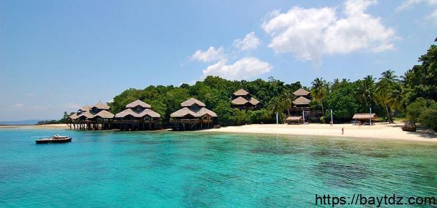 جزيرة دافاو الفلبين