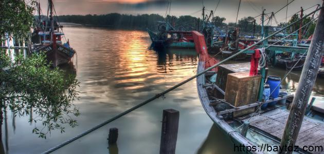 جزيرة سيلانجور في ماليزيا