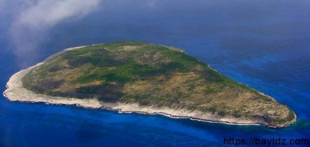جزيرة نافاسا
