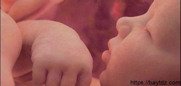حركة الجنين في بطن الأم