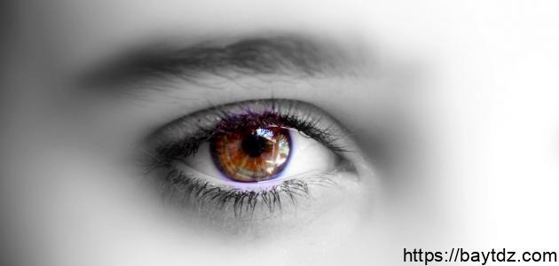 حساسية العين للضوء