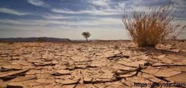 حماية البيئة في الجزائر