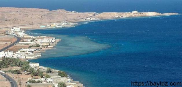 ساحل البحر الأحمر