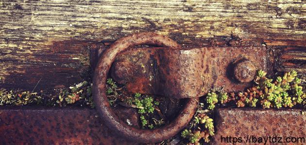 طرق لمنع صدأ الحديد