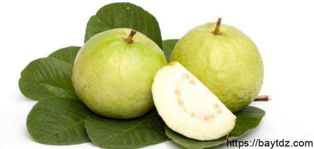 طريقة استعمال ورق الجوافة للكحة