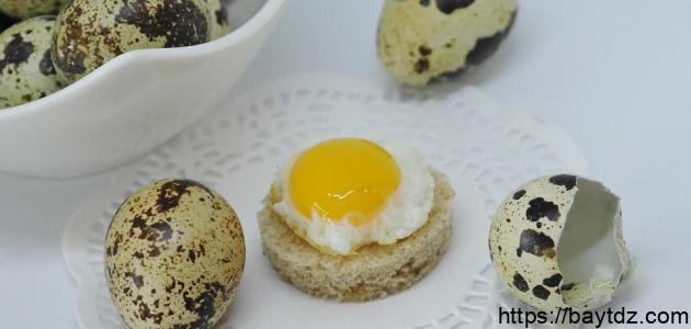 طريقة عمل بيض السمان