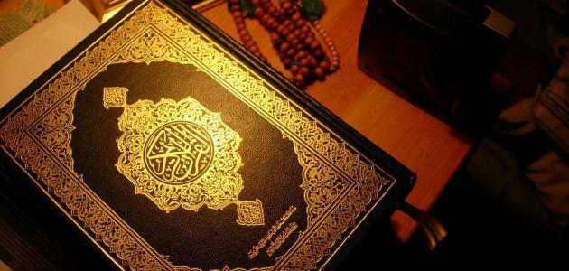 عدد السجدات فى القرآن