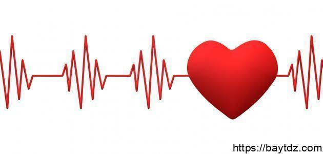 عدد ضربات القلب في الدقيقة