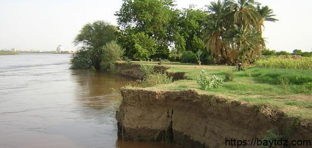 عروس النيل