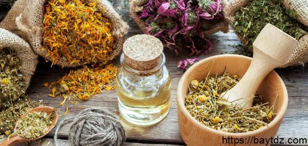 علاج فطريات فروة الشعر